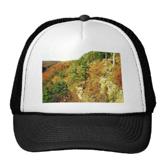 North Rim view Pa Grand Canyon by Ave Hurley Trucker Hat