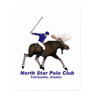 North Star Polo Club Postcard