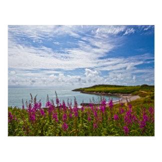 North Wales Coastline Postcard