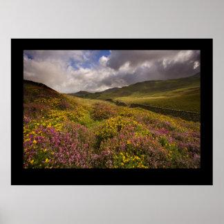 North Wales, near Cregannan Poster