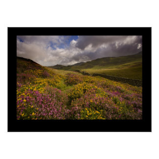 North Wales, near Cregannan Posters
