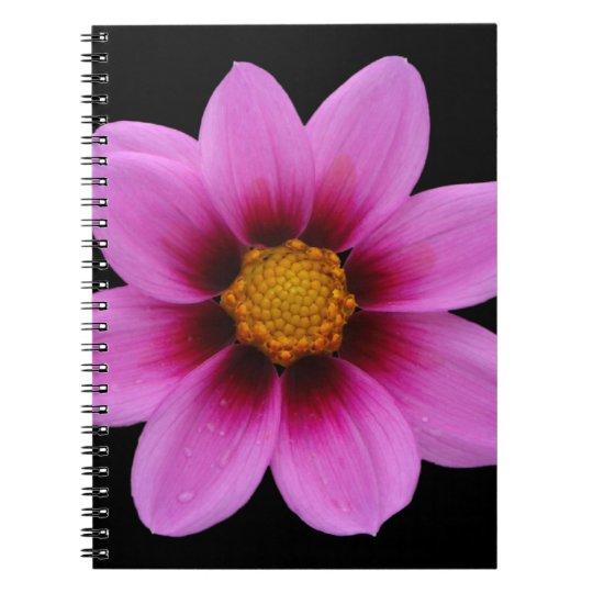 North Western Cosmos Pink FlowerA Spiral Notebook