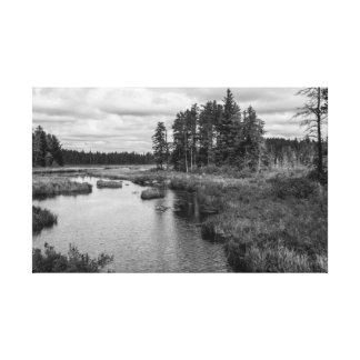 North Woods Wilderness B&W Canvas Print