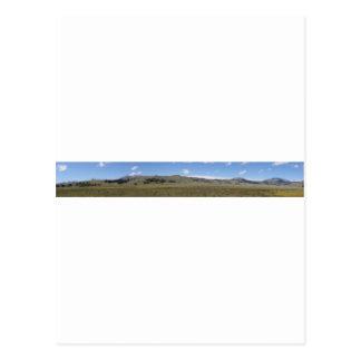 North Yellowstone Panorama Postcard