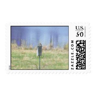 Northeast Bluebird Postage