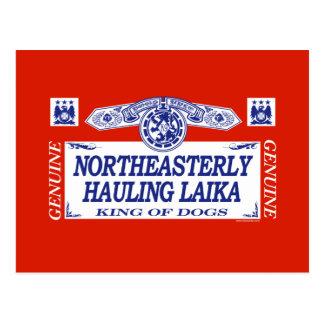Northeasterly Hauling Laika Postcard