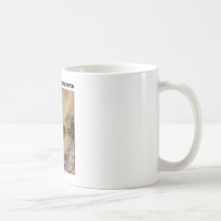 Northern Arizona and Grand Canyon (Picture Earth) Basic White Mug