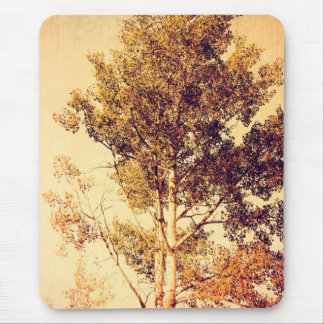 Northern Birch Trees Art Mouse Pad