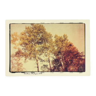 Northern Birch Trees Art Placemat