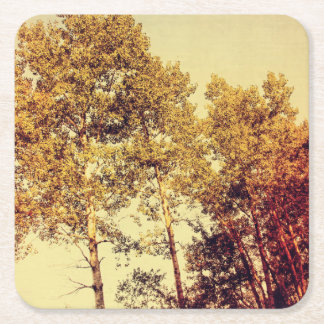 Northern Birch Trees Art Square Paper Coaster