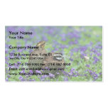Northern bobwhite quail business card templates