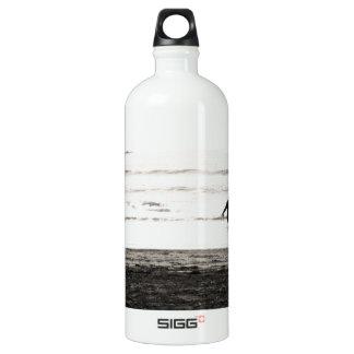Northern California Beach Scene Aluminum Water Bottle
