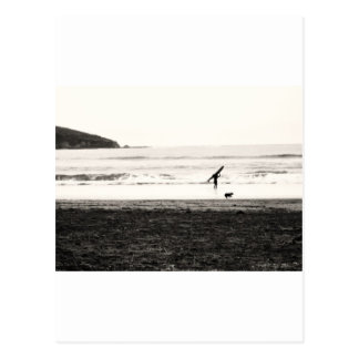 Northern California Beach Scene Postcard