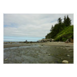 Northern California Coastline from Redwood Park Poster