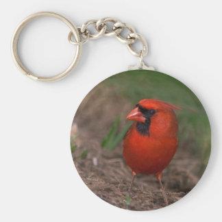 Northern Cardinal 2 Keychain