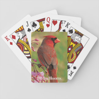 Northern Cardinal 2 Playing Cards