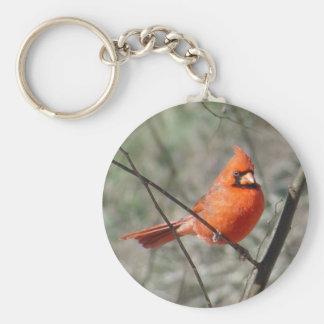 Northern Cardinal Bird Keychain