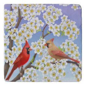Northern Cardinal Birds Stone Trivet Trivets