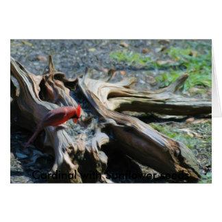 Northern Cardinal eating Sunflower Seeds, Card
