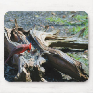 Northern Cardinal eating Sunflower Seeds Mouse Pad