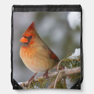 Northern Cardinal female in spruce tree in winter Drawstring Backpack