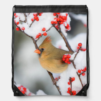 Northern Cardinal female on Common Winterberry Drawstring Backpack
