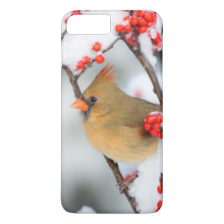 Northern Cardinal female on Common Winterberry iPhone 8 Plus/7 Plus Case