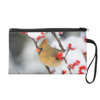 Northern Cardinal female on Common Winterberry Wristlet Purse