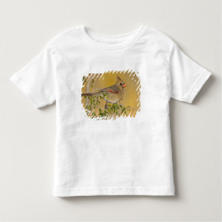 Northern Cardinal female perched on branch Toddler T-shirt