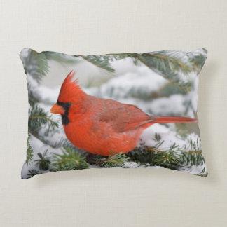 Northern Cardinal in Balsam fir tree in winter Decorative Pillow