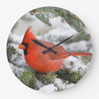 Northern Cardinal in Balsam fir tree in winter Large Clock