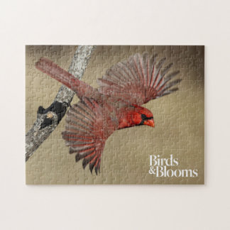 Northern Cardinal In Flight Jigsaw Puzzle