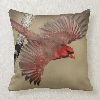 Northern Cardinal In Flight Throw Pillow