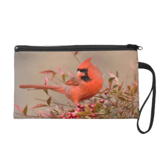 Northern Cardinal in Nandina Heavenly Bamboo Wristlet