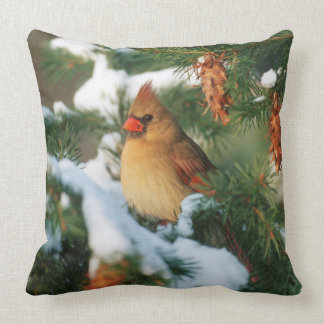 Northern Cardinal in tree, Illinois Throw Pillow