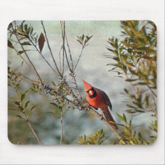 Northern Cardinal in Wax Myrtle Mouse Pad