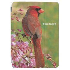 Northern Cardinal Ipad Air Cover at Zazzle