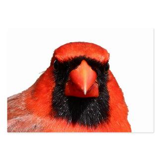 Northern Cardinal Large Business Card