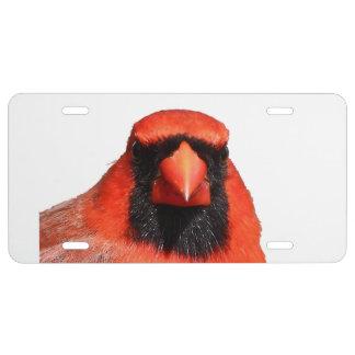 Northern Cardinal License Plate