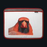 "Northern Cardinal MacBook Air Sleeve<br><div class=""desc"">This angry Northern Cardinal is a bird who many people consider their favorite bird.  Make a statement by having this beautiful creature on your product. Copyright 2014 Airporttools Inc All Rights Reserved</div>"