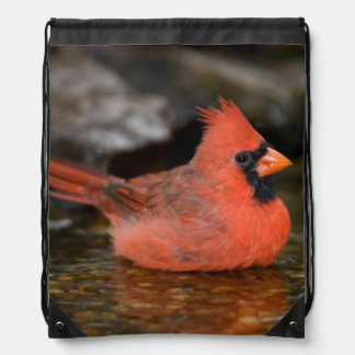 Northern Cardinal male bathing Drawstring Backpack