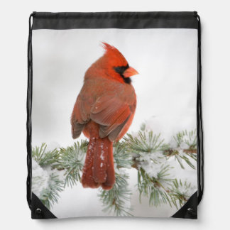 Northern Cardinal male on Blue Atlas Cedar Drawstring Backpack