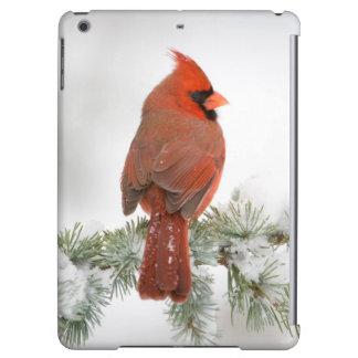 Northern Cardinal male on Blue Atlas Cedar iPad Air Cover