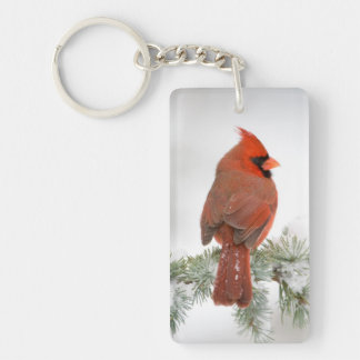 Northern Cardinal male on Blue Atlas Cedar Keychain