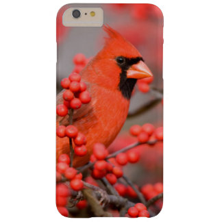 Northern Cardinal male on Common Winterberry Barely There iPhone 6 Plus Case
