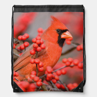 Northern Cardinal male on Common Winterberry Drawstring Bag