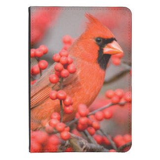 Northern Cardinal male on Common Winterberry Kindle 4 Case
