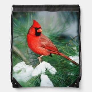 Northern Cardinal male on tree, IL Drawstring Backpack