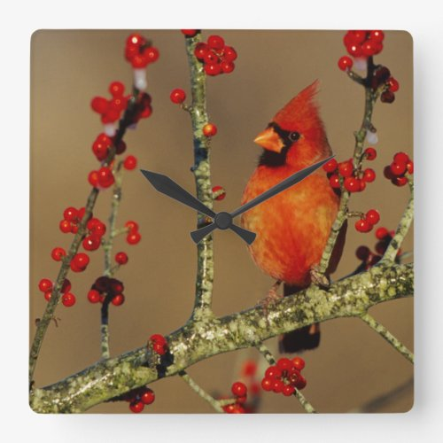 Northern Cardinal Wall Clock