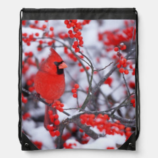 Northern Cardinal male, Winter, IL Drawstring Backpack